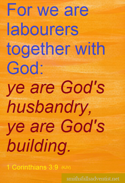 1 Corinthians 3 verse 9